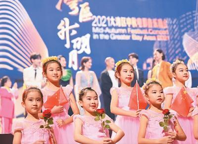 重点色短毛猫的大长脸,快来看看这只小猫咪